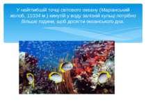 У найглибшій точці світового океану (Маріанський жолоб, 11034 м.) кинутій у в...