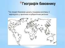 Географія бавовнику На планеті бавовник досить поширена рослина, її вирощують...
