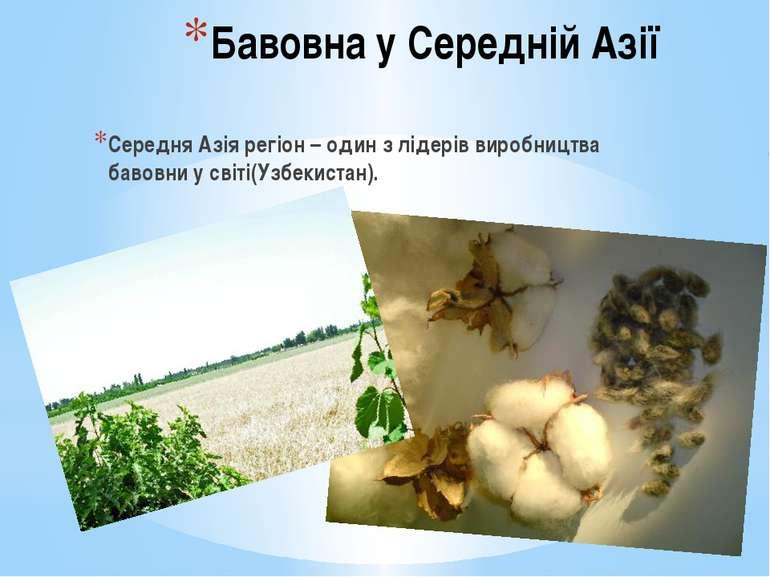 Бавовна у Середній Азії Середня Азія регіон – один з лідерів виробництва баво...