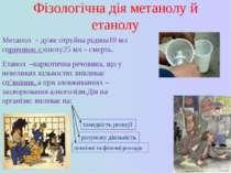 Фізологічна дія метанолу й етанолу Метанол – дуже отруйна рідина10 мл спричин...