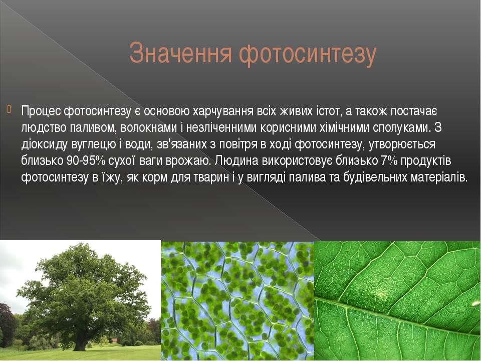 Значення фотосинтезу Процес фотосинтезу є основою харчування всіх живих істот...