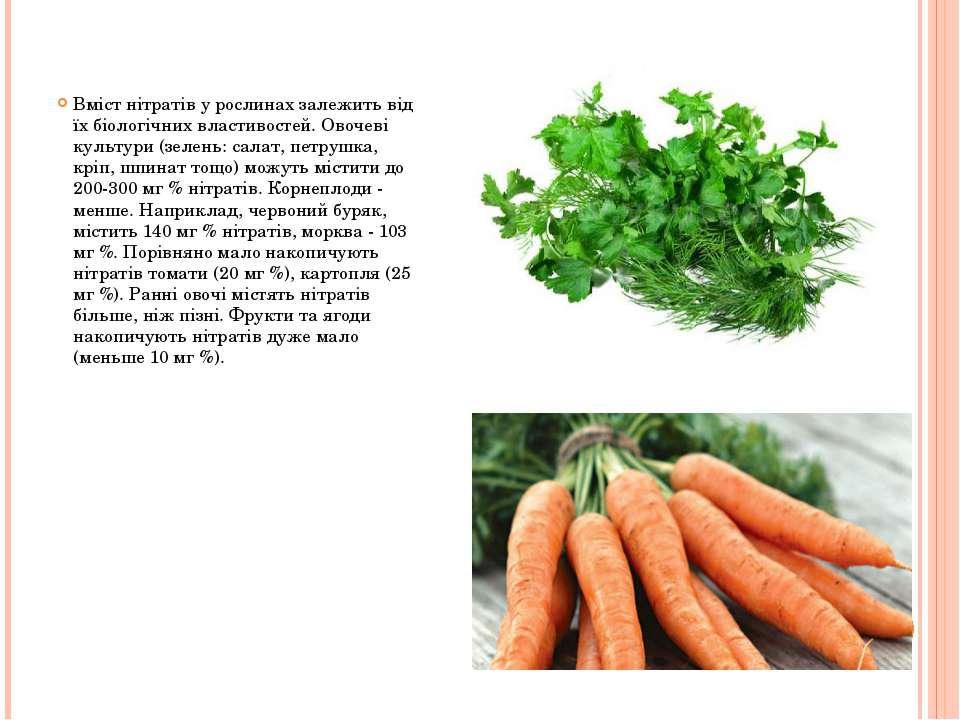 Вміст нітратів у рослинах залежить від їх біологічних властивостей. Овочеві к...