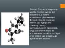 Значно більше поширення мають похідні амінів, які виконують в живих організма...