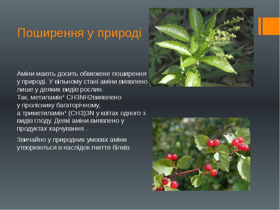 Поширення у природі Аміни мають досить обмежене поширення у природі. У вільно...