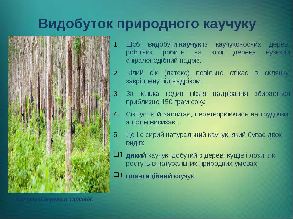 Видобуток природного каучуку Щоб видобутикаучукіз каучуконосних дерев, робі...