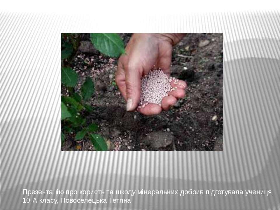 Презентацію про користь та шкоду мінеральних добрив підготувала учениця 10-А ...