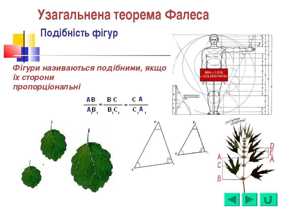 Узагальнена теорема Фалеса Подібність фігур Фігури називаються подібними, якщ...