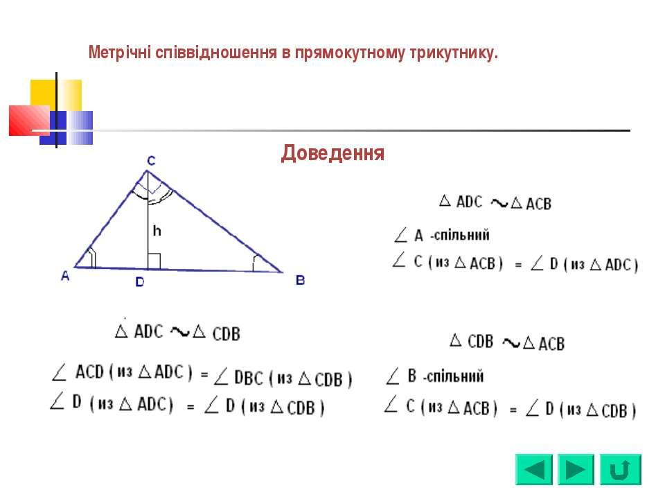 Доведення Метрічні співвідношення в прямокутному трикутнику.