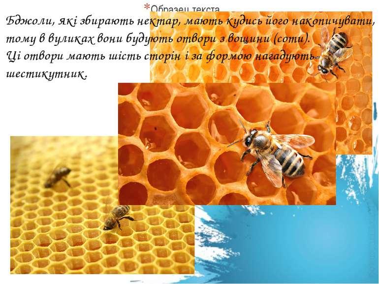 Бджоли, які збирають нектар, мають кудись його накопичувати, тому в вуликах в...