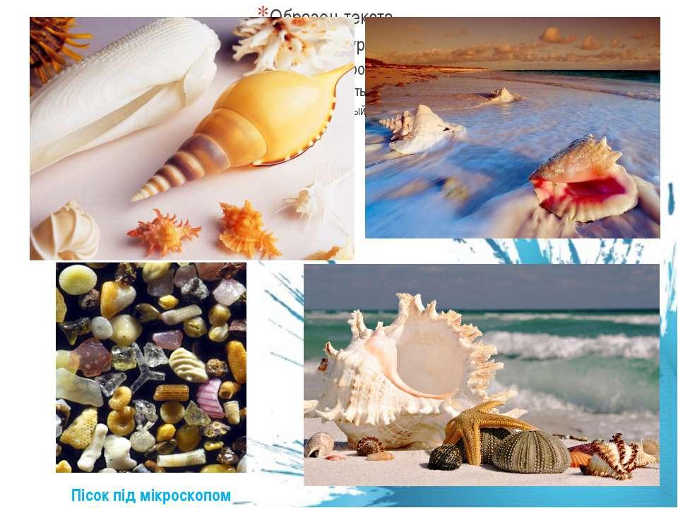 Пісок під мікроскопом
