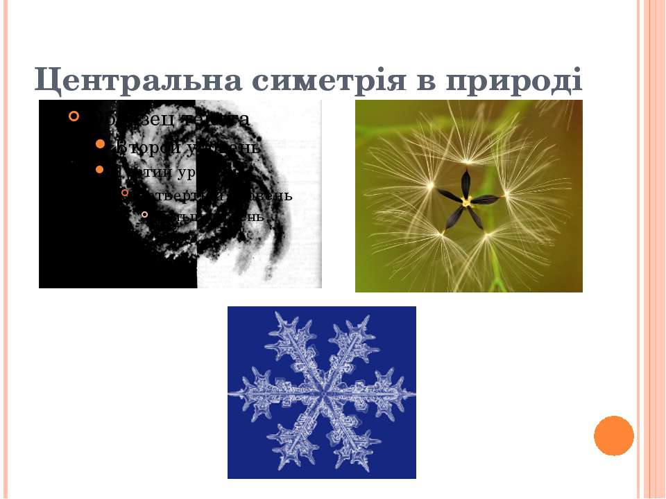 Центральна симетрія в природі