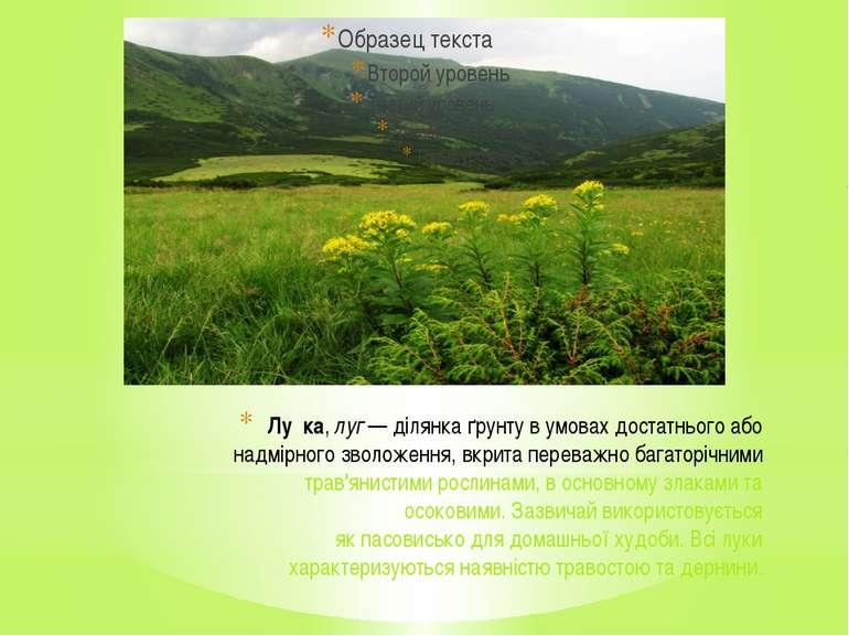 Лу ка,луг— ділянка ґрунту в умовах достатнього або надмірного зволоження, в...