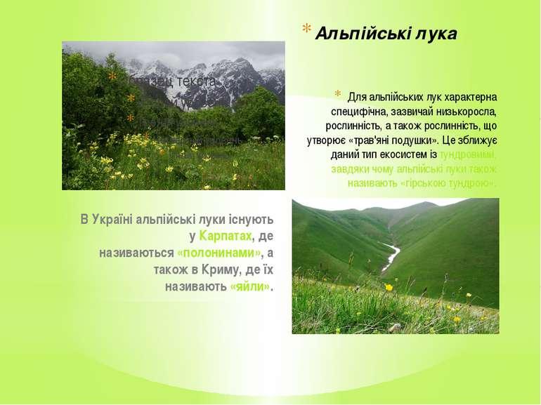 Для альпійських лук характерна специфічна, зазвичай низькоросла, рослинність,...