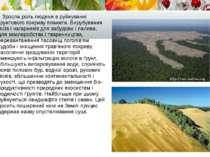 Зросла роль людини в руйнуванні ґрунтового покриву планети. Вирубування лісів...