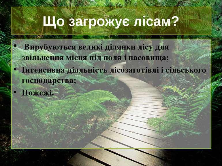 Що загрожує лісам? Вирубуються великі ділянки лісу для звільнення місця під п...