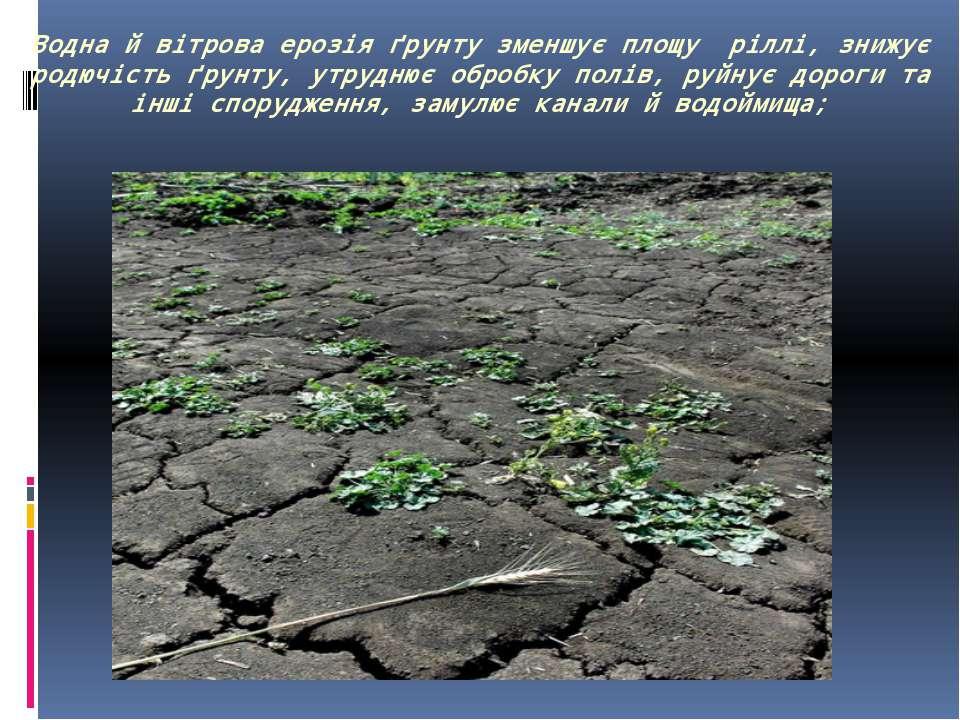 Водна й вітрова ерозія ґрунту зменшує площу ріллі, знижує родючість ґрунту, у...