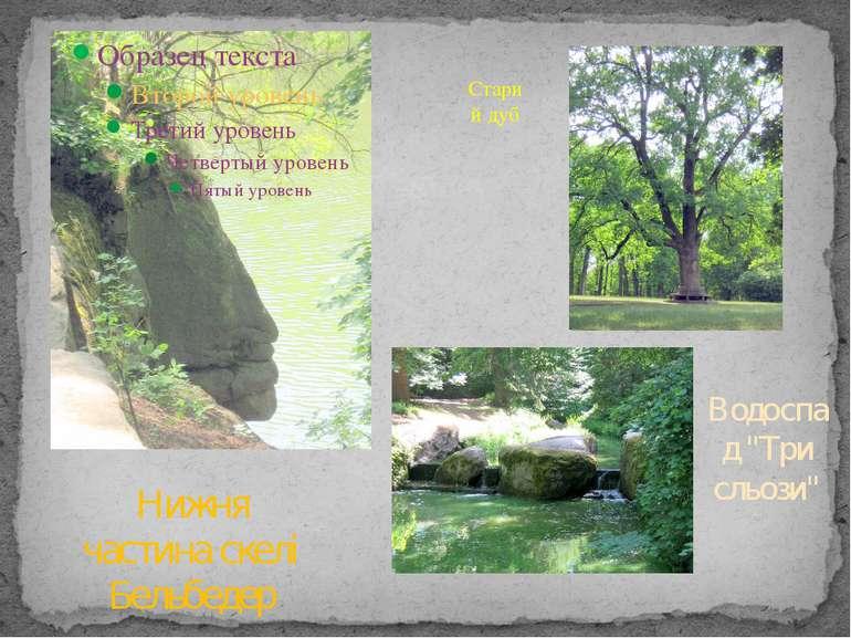 """Старий дуб Нижня частина скелі Бельбедер Водоспад """"Три сльози"""""""