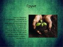 Грунт Грунти у Карпатах різноманітні і відповідно до кліматичних умов розміщ...