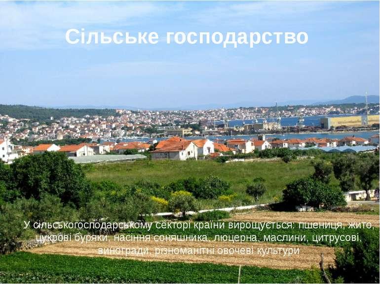 Сільське господарство У сільськогосподарському секторі країни вирощується: пш...
