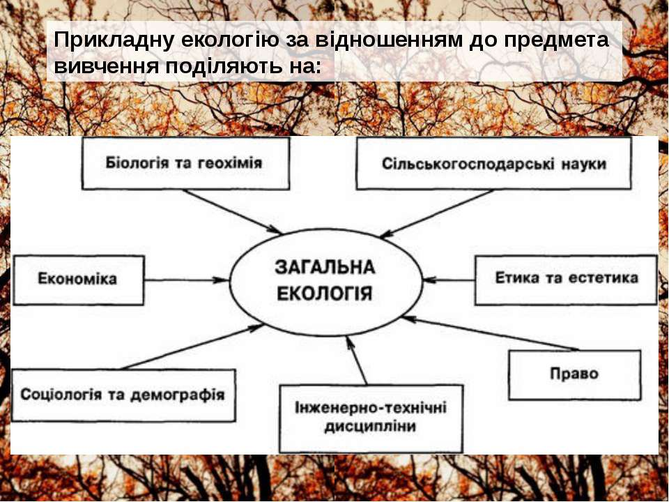 Прикладну екологію за відношенням до предмета вивчення поділяють на: