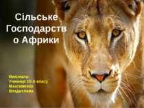 Сільське Господарство Африки Виконала: Учениця 10-А класу Максименко Владислава