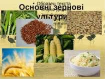 Основні зернові культури: