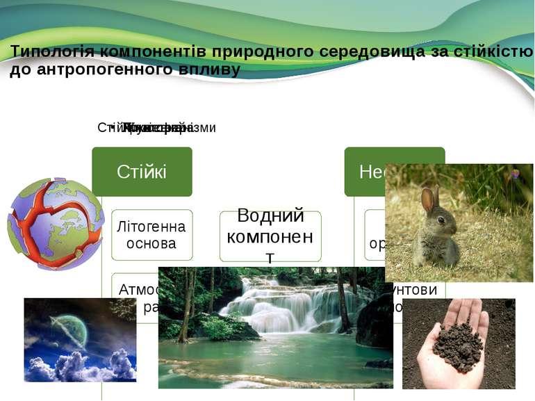 Типологія компонентів природного середовища за стійкістю до антропогенного вп...