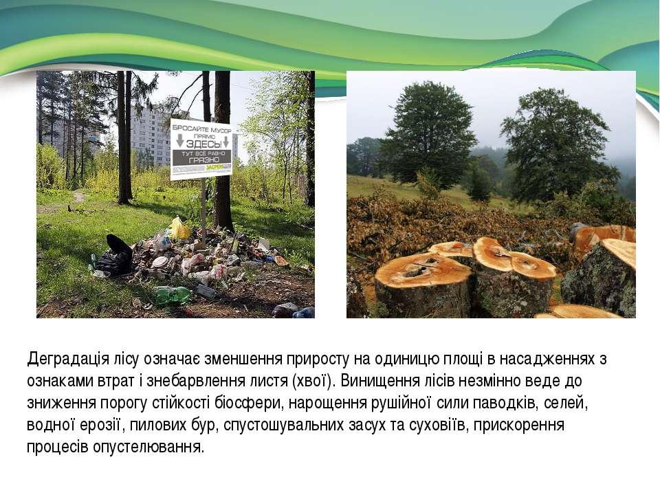 Деградація лісу означає зменшення приросту на одиницю площі в насадженнях з о...