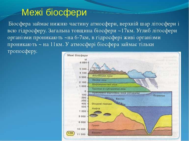 Межі біосфери Біосфера займає нижню частину атмосфери, верхній шар літосфери ...