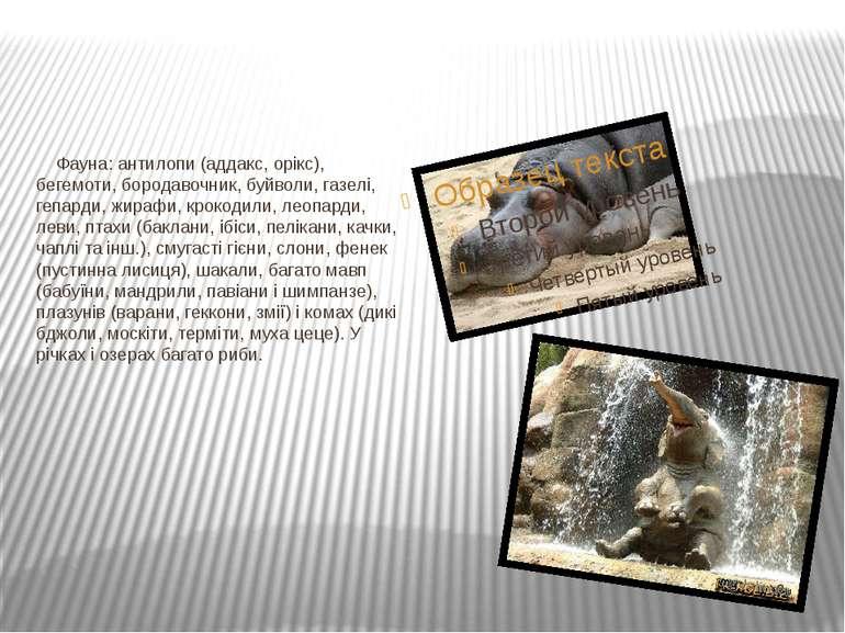 Фауна: антилопи (аддакс, орікс), бегемоти, бородавочник, буйволи, газелі, геп...