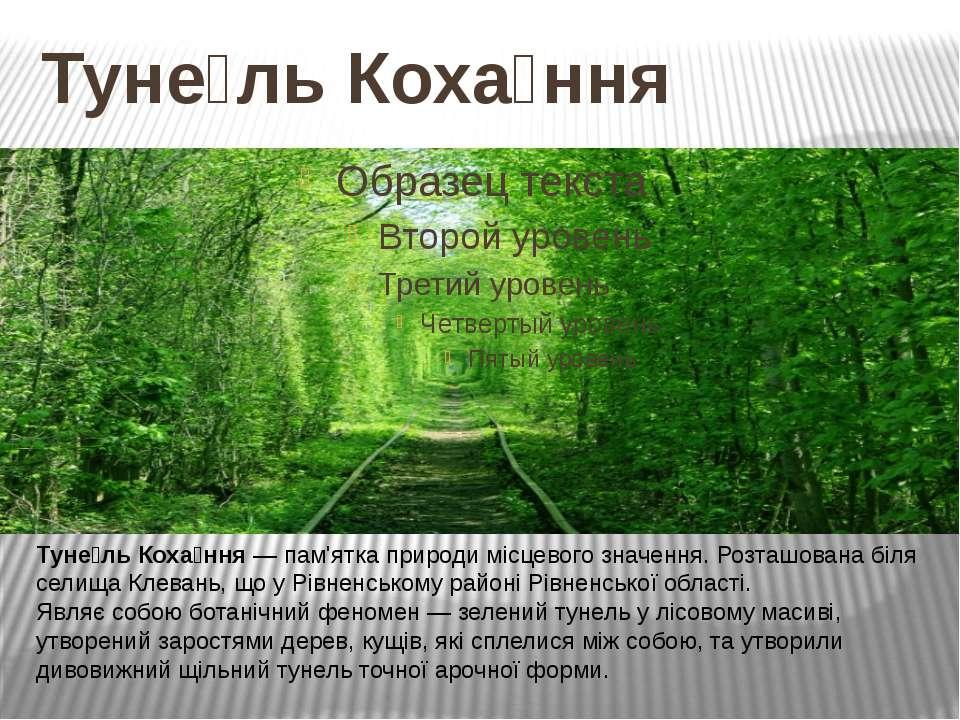 Туне ль Коха ння Туне ль Коха ння — пам'ятка природи місцевого значення. Розт...