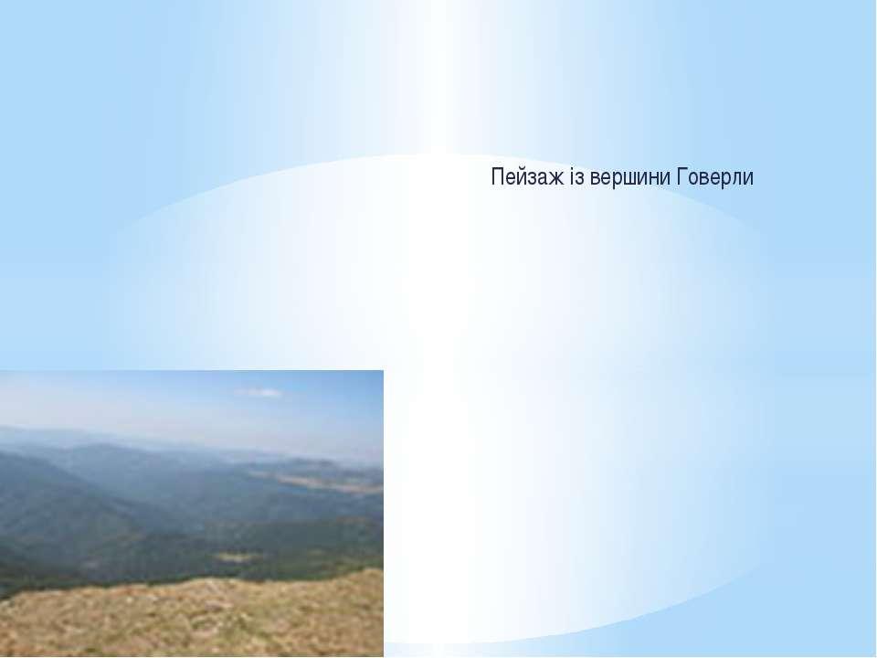 Пейзаж із вершини Говерли