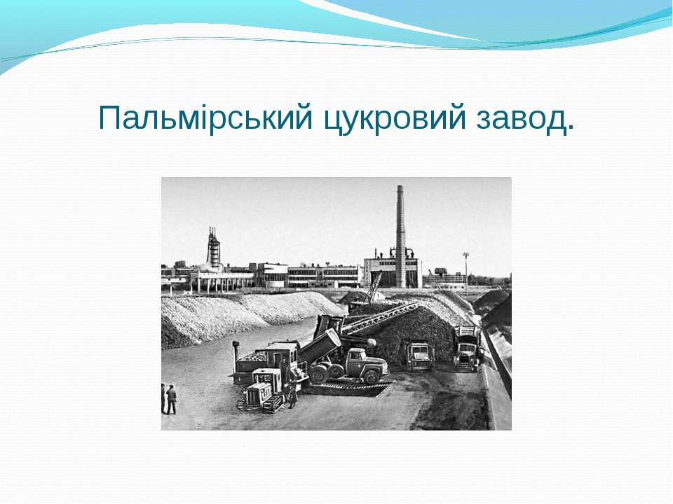 Пальмірський цукровий завод.
