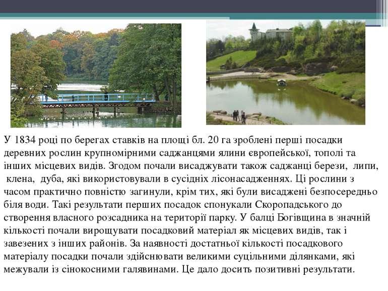 У1834році по берегах ставків на площі бл. 20 га зроблені перші посадки дере...