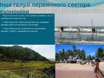 Інші галузі первинного сектора економіки Рибальство ведеться як у внутрішніх ...
