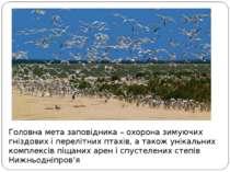 Головна мета заповідника – охорона зимуючих гніздових і перелітних птахів, а ...