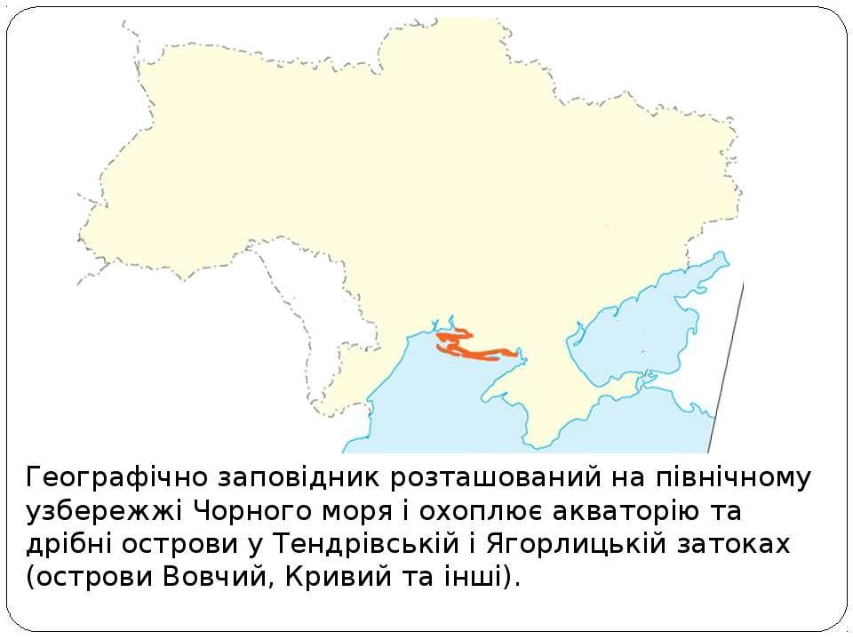 Географічно заповідник розташований на північному узбережжі Чорного моря і ох...