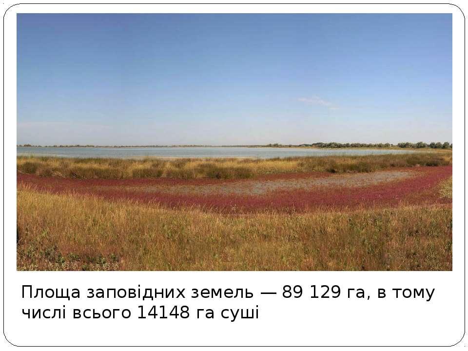 Площа заповідних земель — 89 129 га, в тому числі всього 14148 га суші