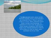 Упомірному поясілежить значна частина Північної Америки. В його складі виді...