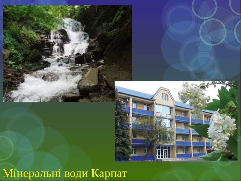 Мінеральні води Карпат