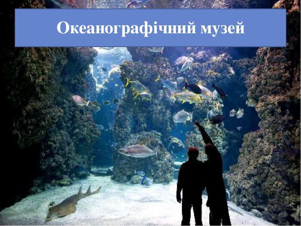 Океанографічний музей