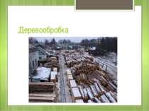 Деревообробка Лісова, деревообробна і целюлозно-паперова промисловість району...