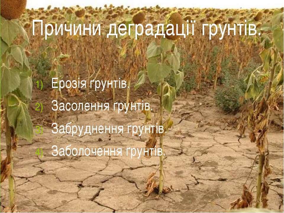 Ерозія ґрунтів. Засолення ґрунтів. Забруднення ґрунтів. Заболочення ґрунтів. ...