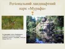 Регіональний ландшафтний парк «Мурафа» Розташований у межахЧернівецького та...