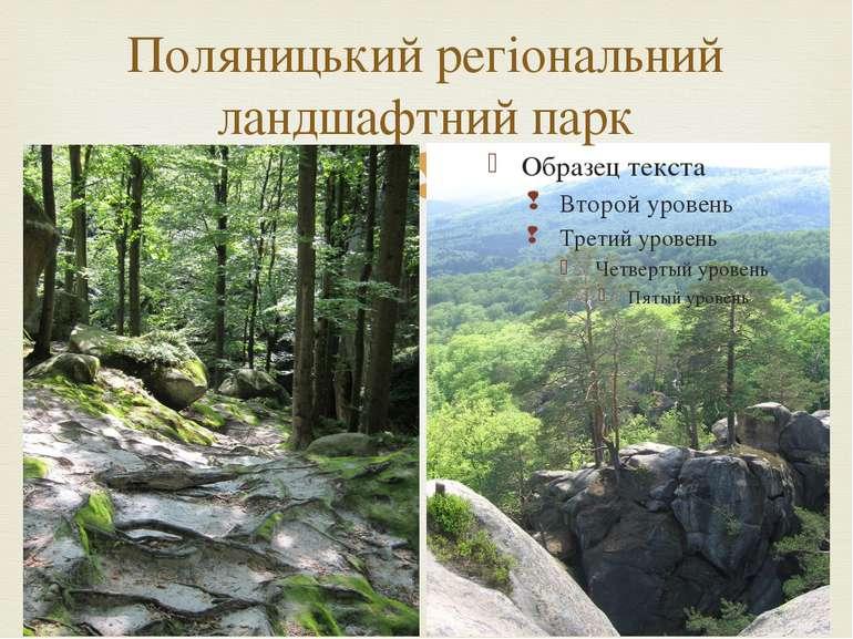 Поляницький регіональний ландшафтний парк