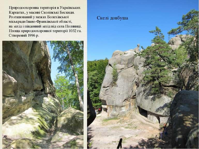 Природоохоронна територіявУкраїнських Карпатах, у масиві Сколівські Бескиди...