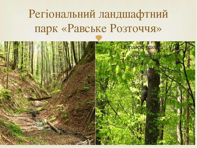 Регіональний ландшафтний парк «Равське Розточчя»