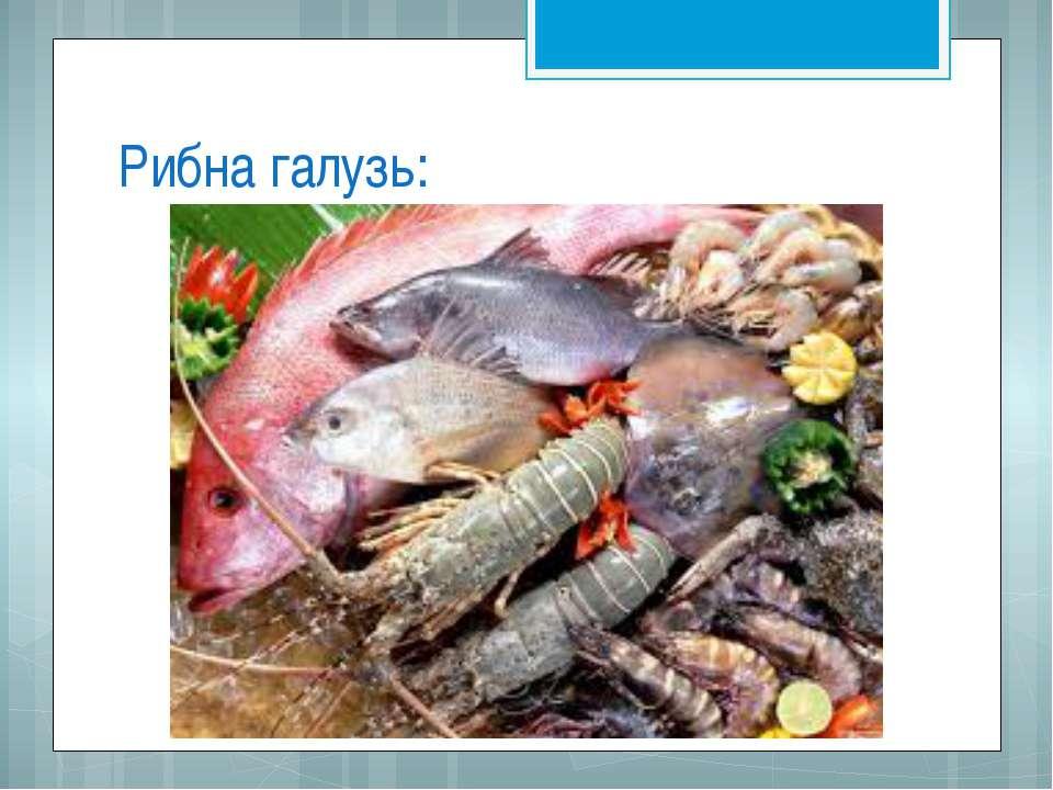 Рибна галузь: