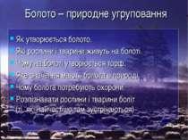Болото – природне угруповання Як утворюється болото. Які рослини і тварини жи...