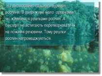 На дно постійно падають відмерлі рослини. В озері живе мало організмів, які ж...